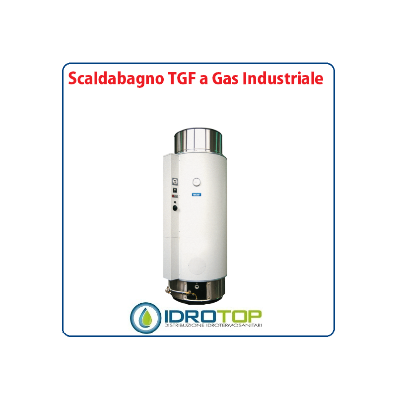 Scaldabagno lt400 tgf a gas industriale heizer a camera stagna for Scaldabagno a gas bricoman